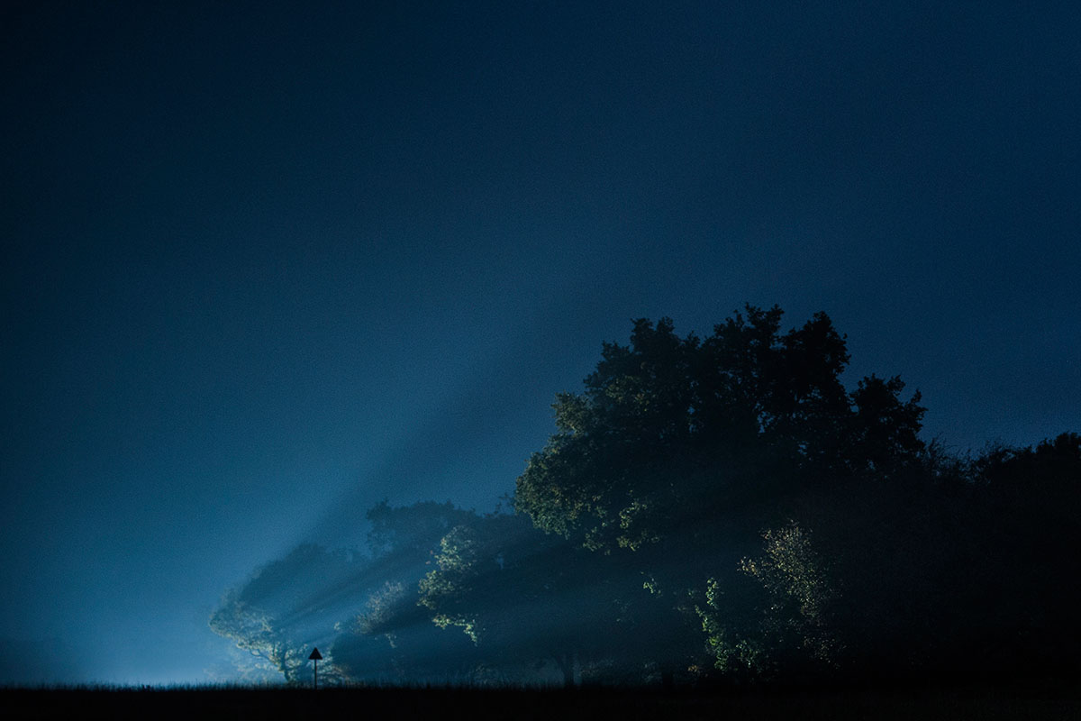 Nightscapes image